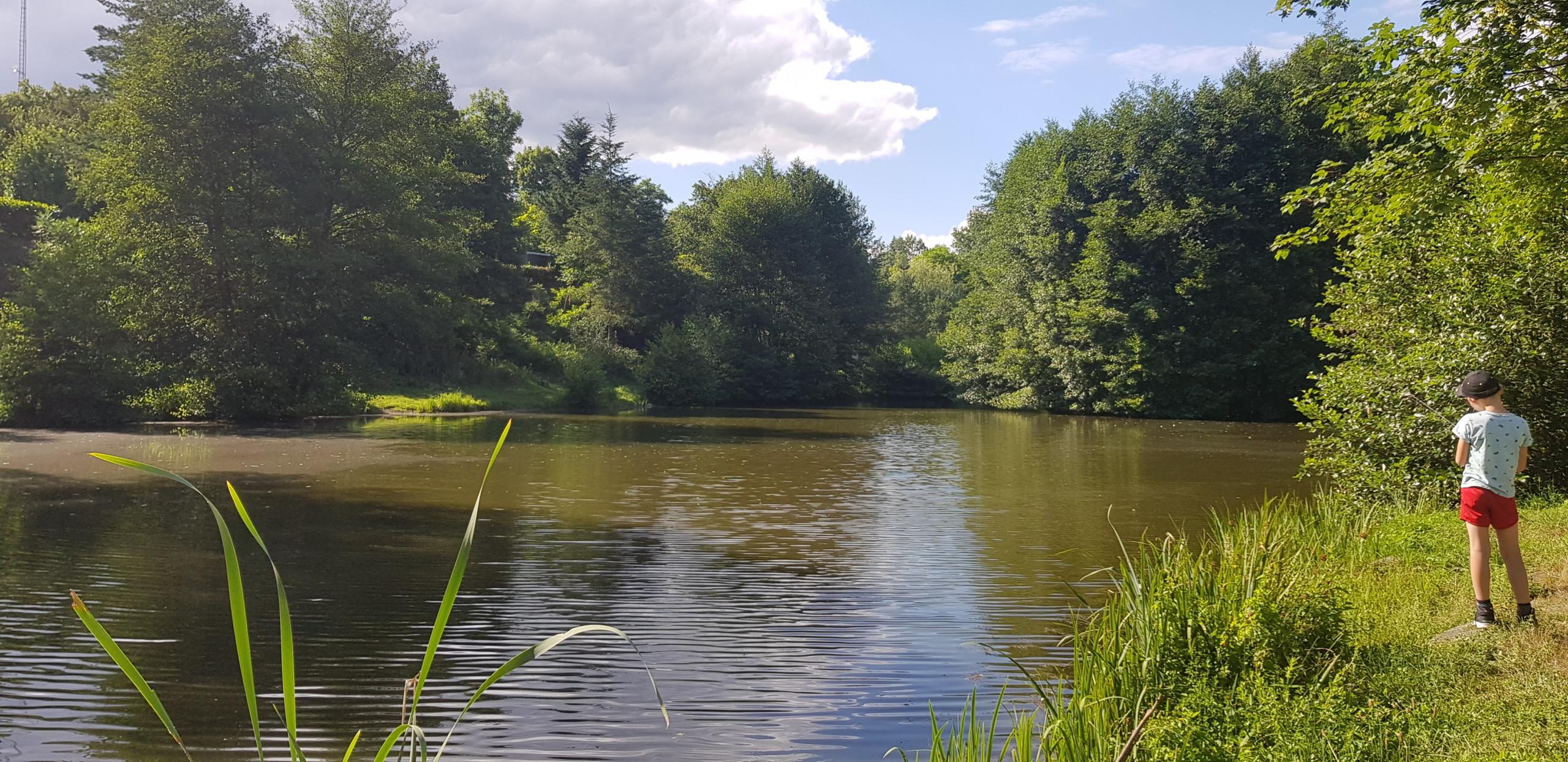 Etang de pêche du camping