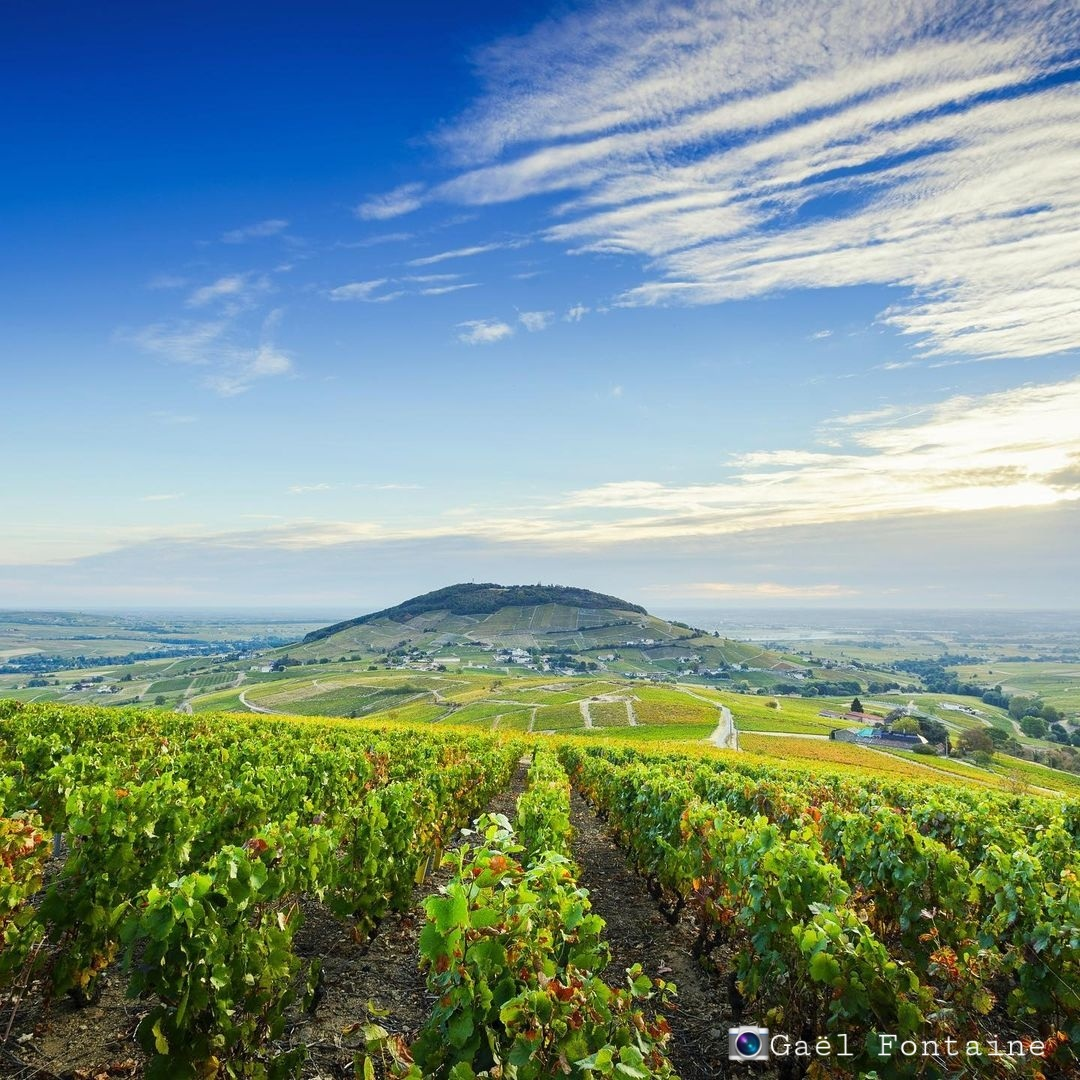 Mont Brouilly 1